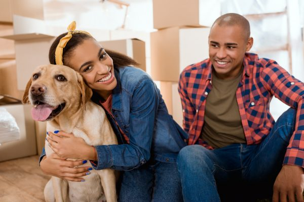 Make moving with your pet easier with these tips